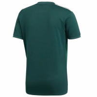 2018 Mexico Home Green Soccer Jersey Shirt,2018 world cup